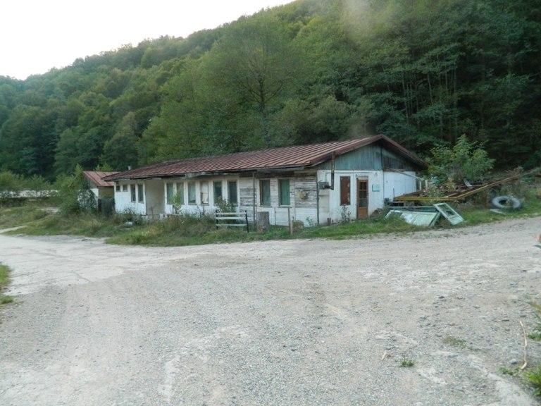 DSCN6633