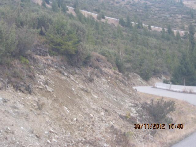 Poiana Marului & Helga-Muntele Mic 049